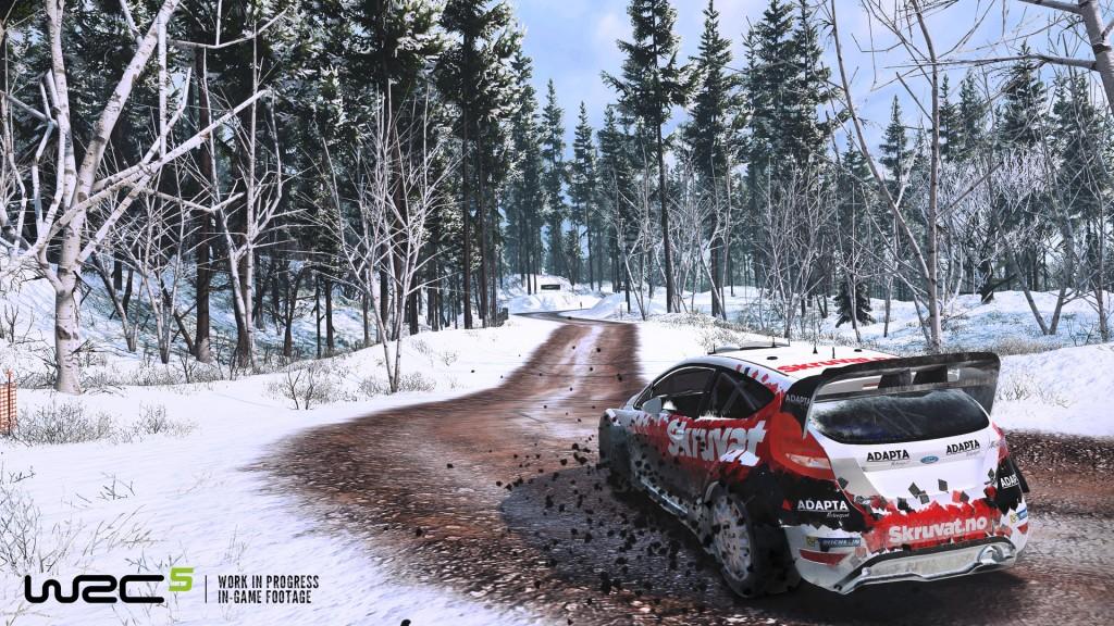 WRC-5-snow